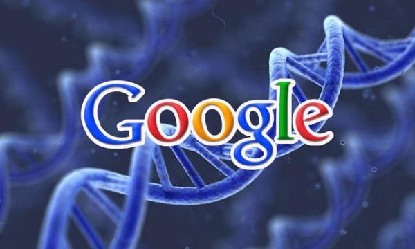 plan_google-gg
